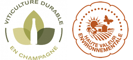 Logo viticulture durable et HVE